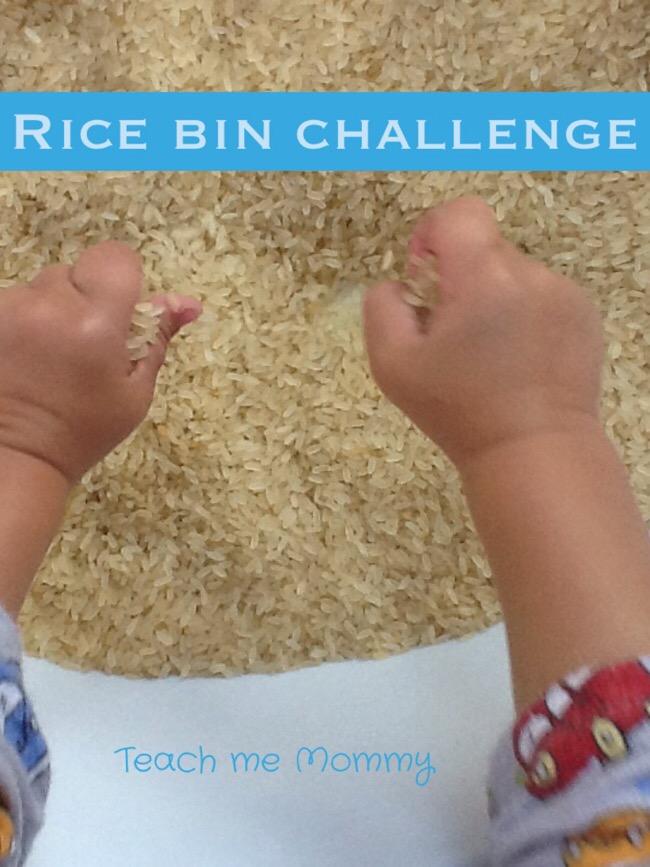 rice bin