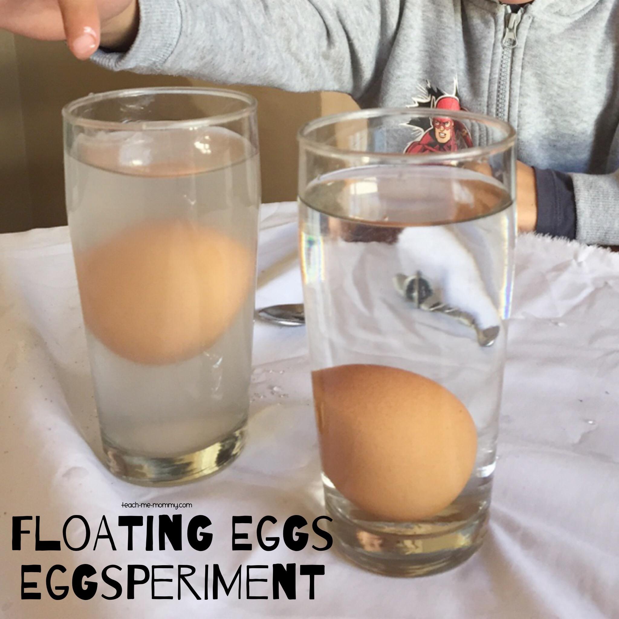 Eggsperiment