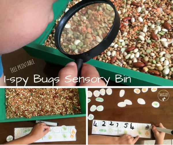 I-spy Bugs bin