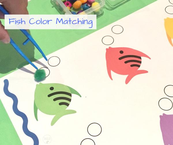 Matching colors FISH