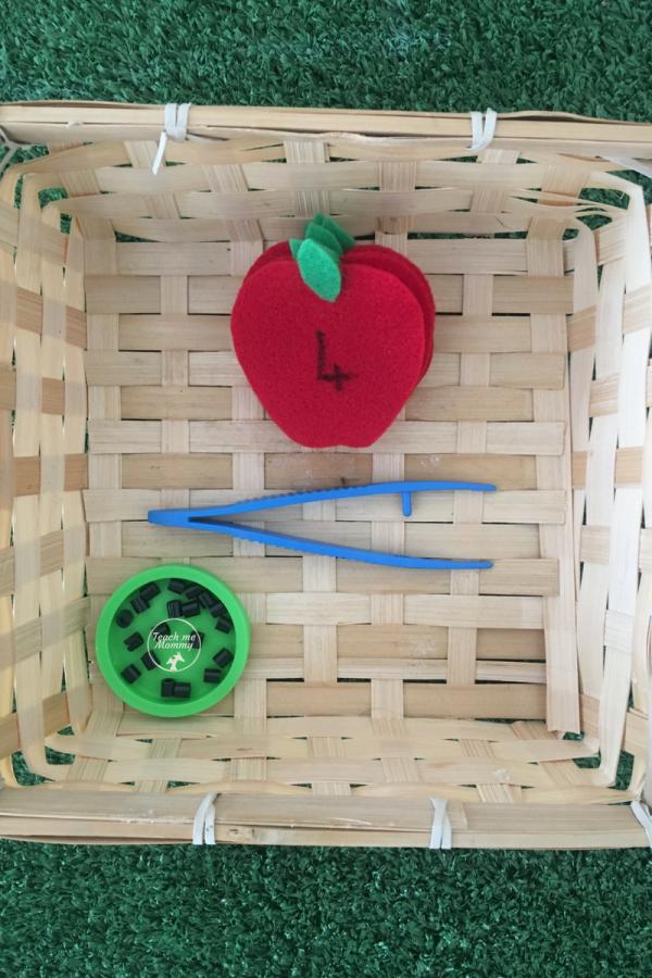 apple seeds1