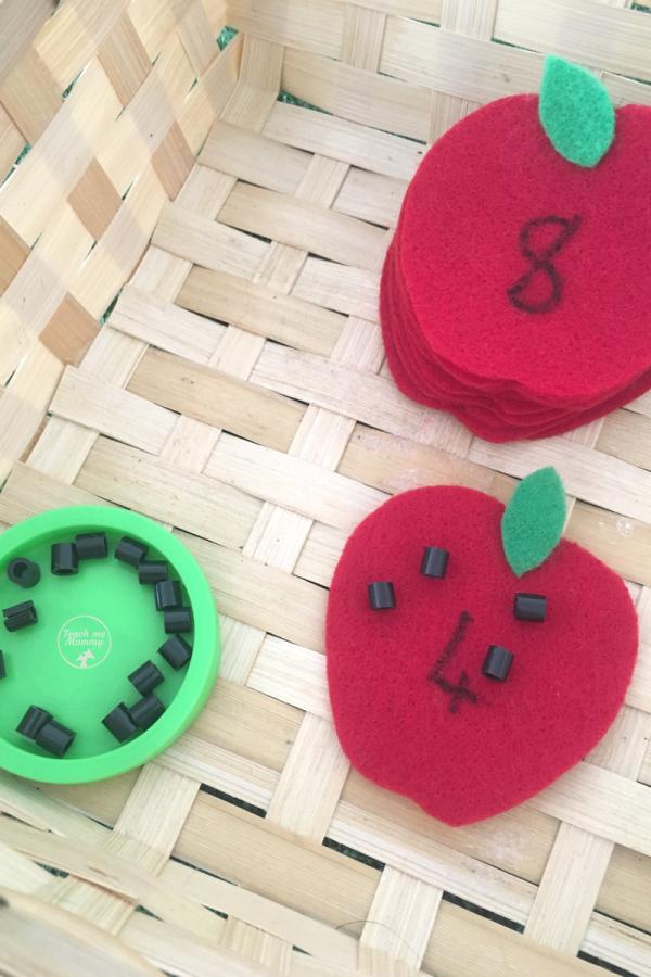 apple seeds3