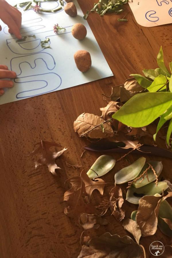 leaf names3
