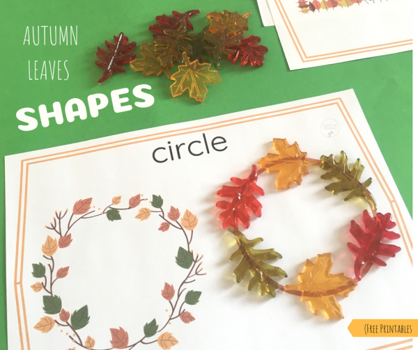 Autumn Leaf Shapes - Teach Me Mommy
